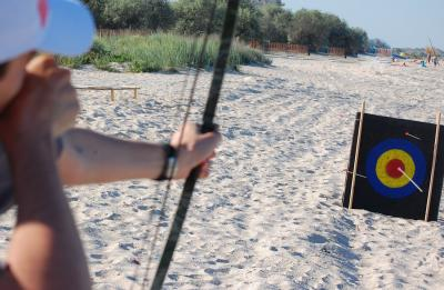 Download free shooting longbow arrow target sand image