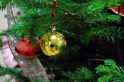 Download free ball fir christmas image