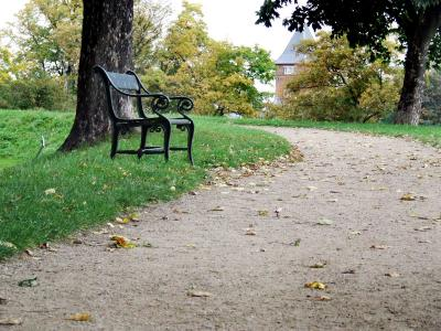 Download free tree path park bench image