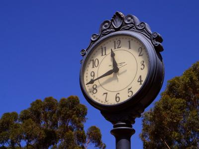 Download free tree blue sky clock image