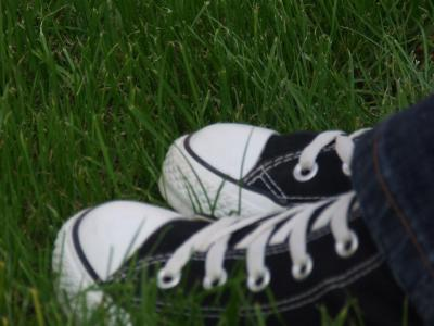 Download free grass shoe image