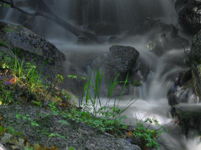 Download free water grass rock waterfall image